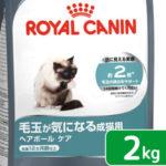 グルメな猫ちゃん御用達!通販でお取り寄せ 美味しくて体に優しい猫の餌 人気のキャットフードランキング